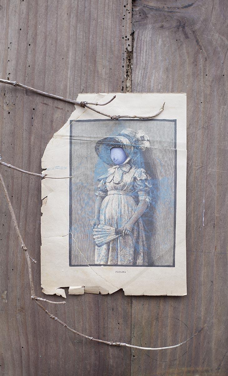 paula-roush-queer-paper-gardens-15