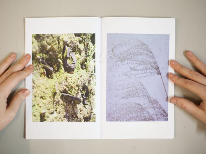 photobooks created in the workshops