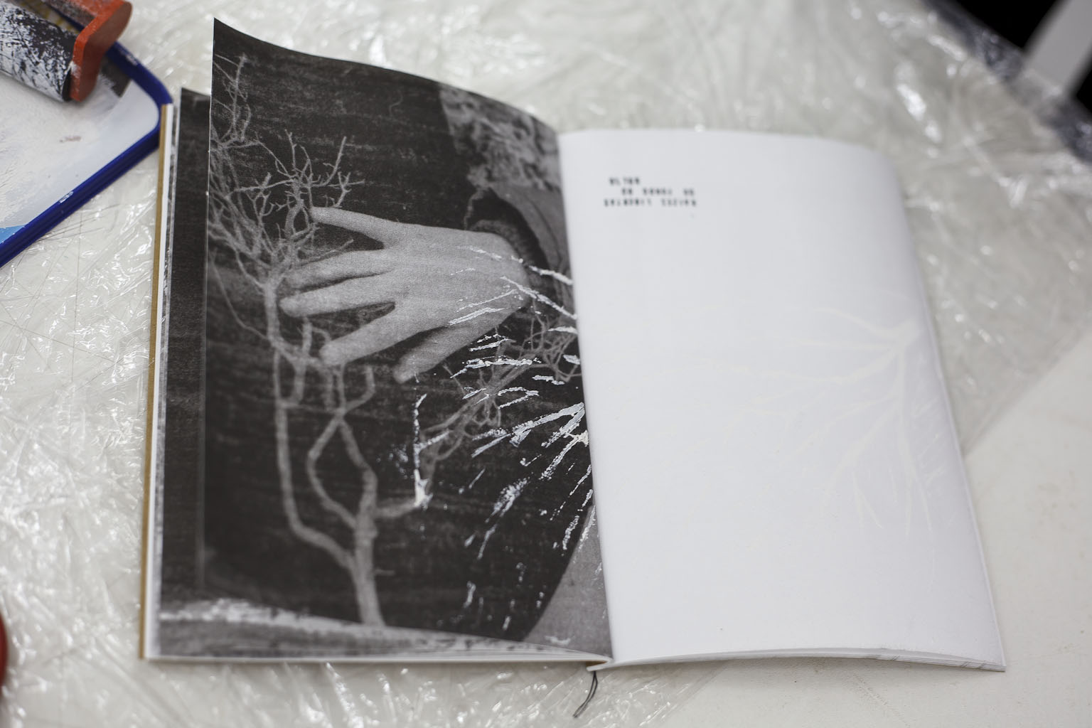 Page Turner#1- Photography, The Book and Self-Publishing , exhibition view Exhibition, 6th Lisbon Photobook Fair:, Arquivo Municipal De Lisboa, 2015