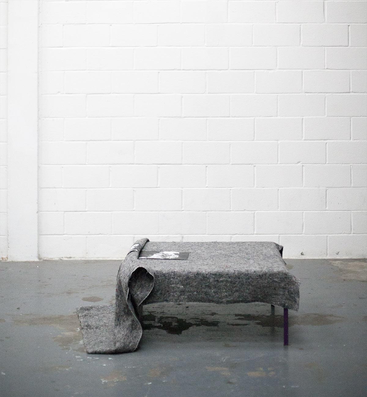 paula roush, Flora McCallica, installation view, Unit 8 msdm studio London