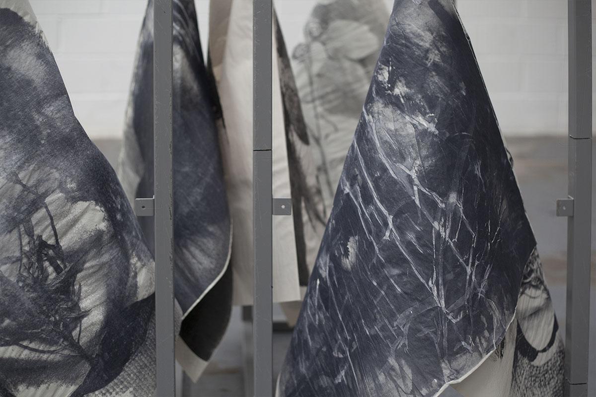 Flora McCallica, installation view 2017