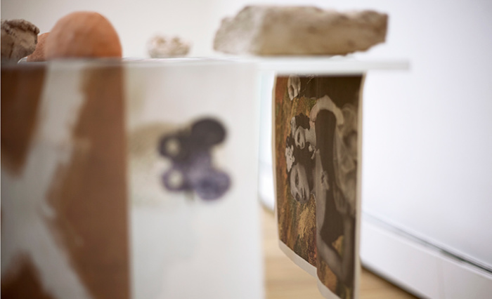 paula roush: Areopagitica (Milton's Nose), Art in a Book shell exhibition views, Milton's Gallery, London