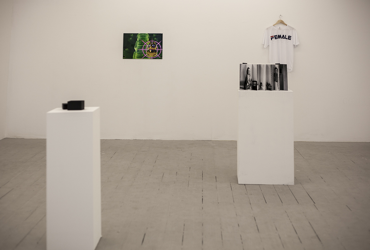 paula roush: super private, exhibition views, Infinite Multiple launch, Carroll / Fletcher London
