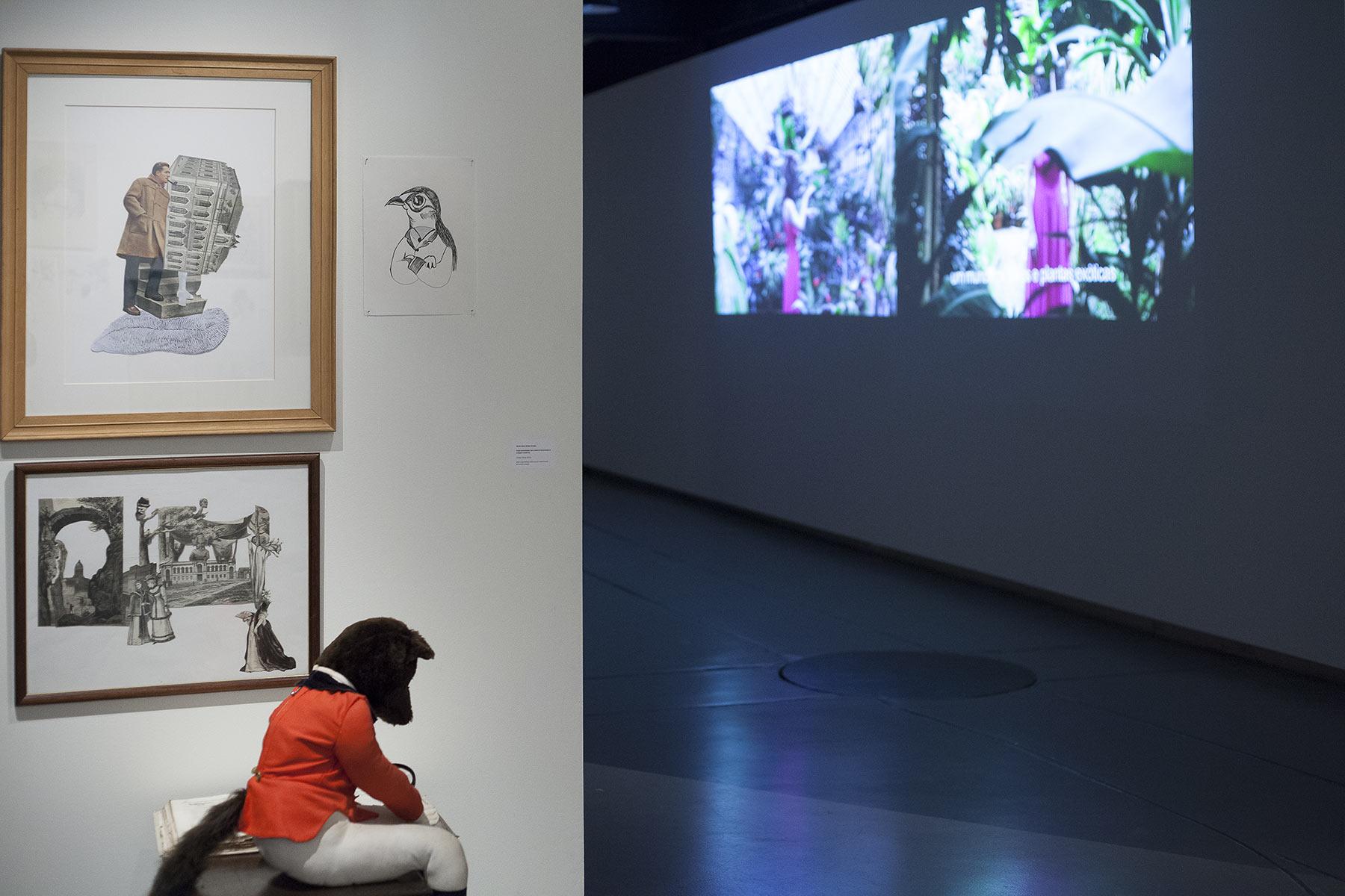 queer-paper-gardens-video-installation-4