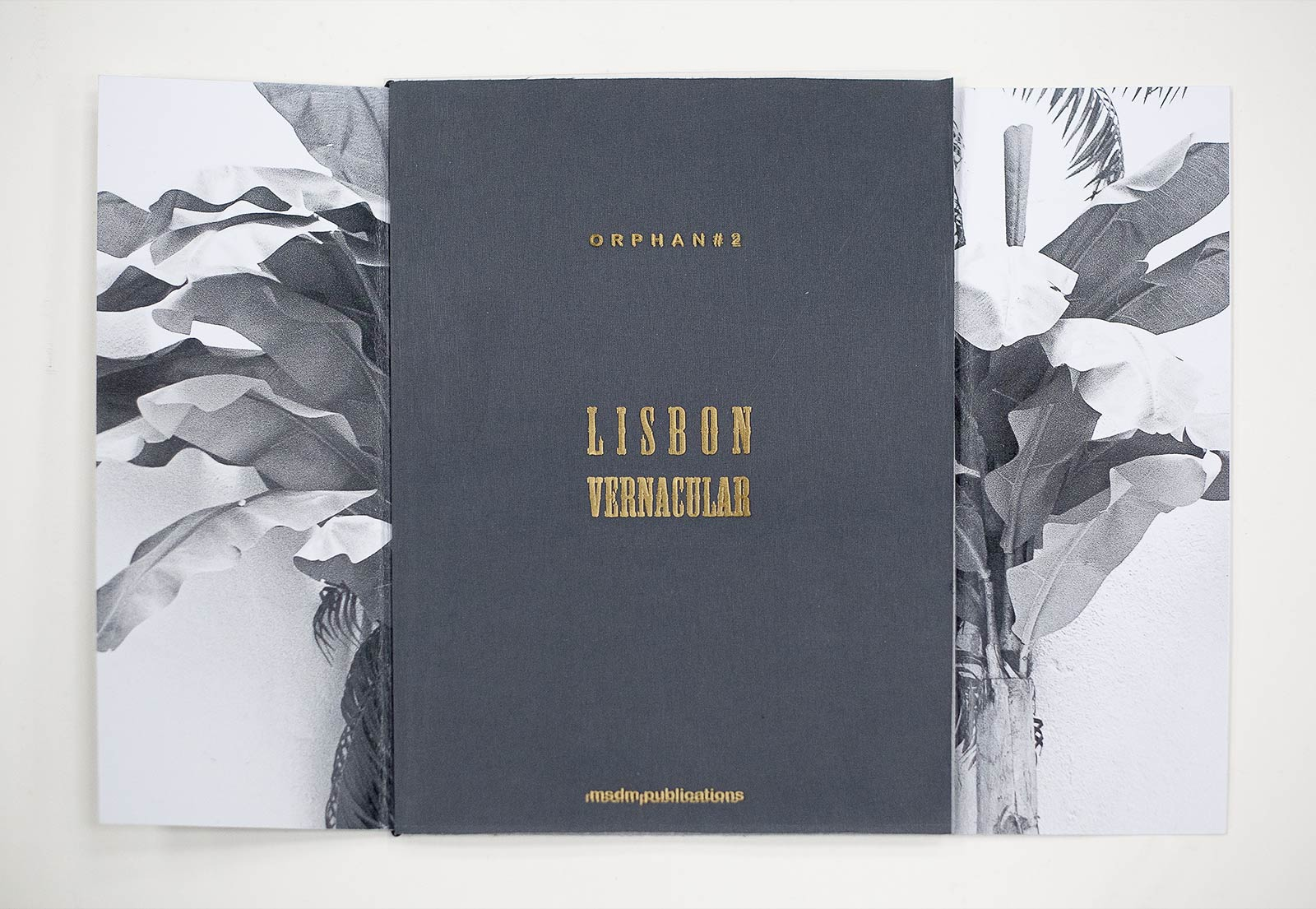 paula-roush-lisbon-vernacular-23
