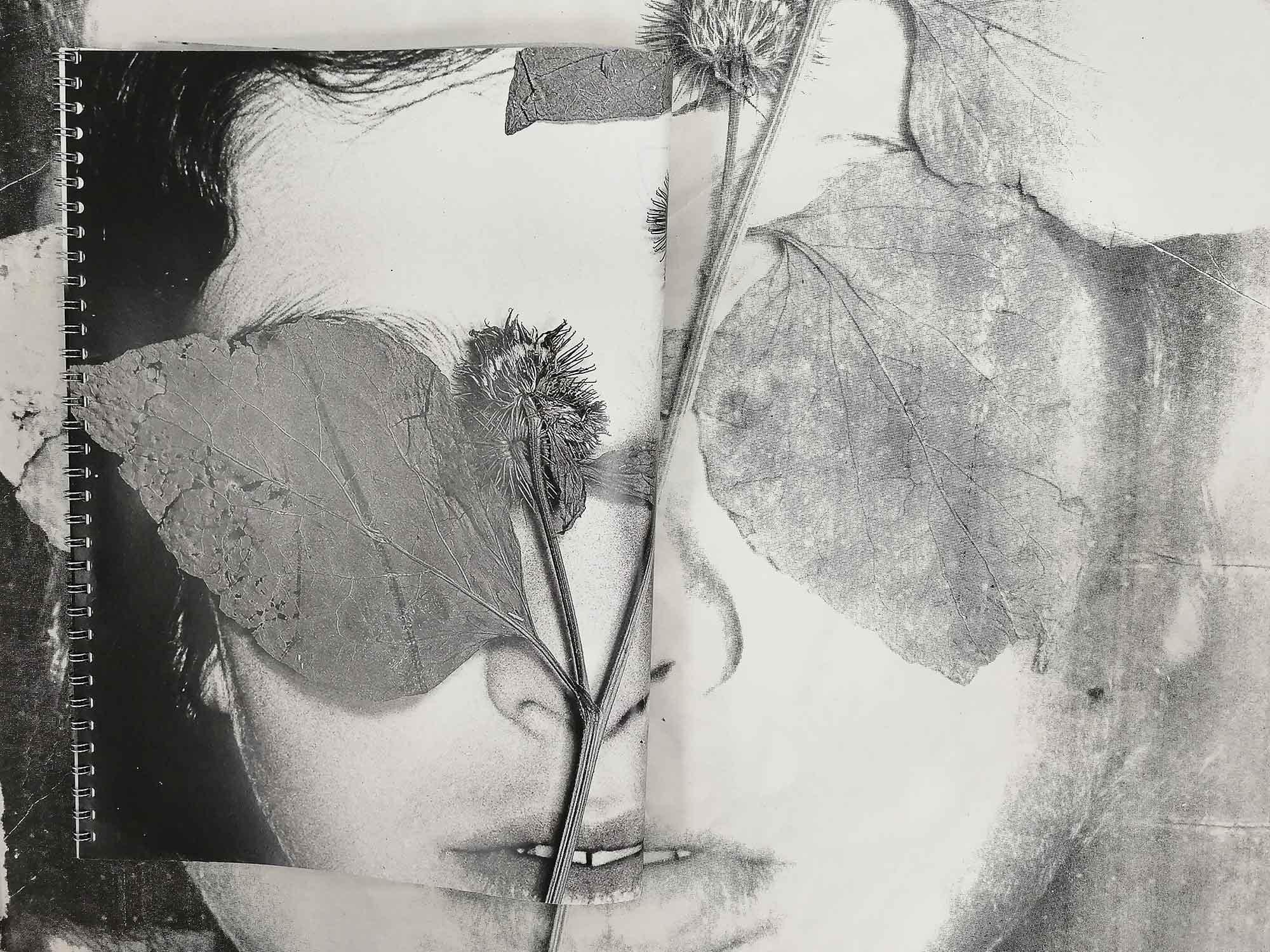 flora-mccallica-wire-ed-01