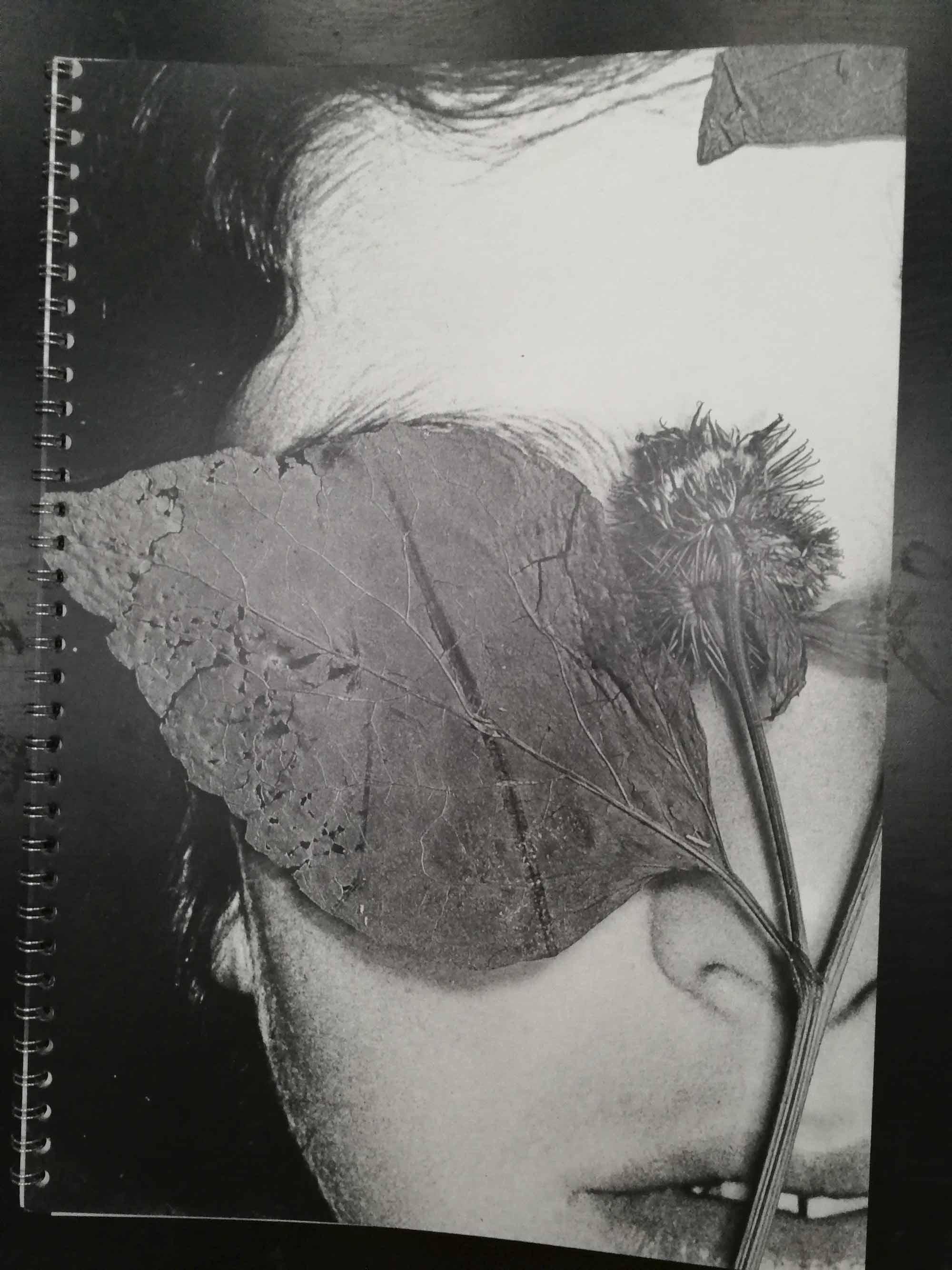 flora-mccallica-wire-ed-05