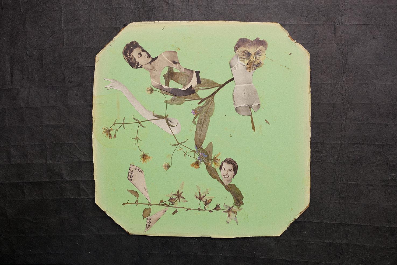 paula-roush-queer-paper-gardens-21