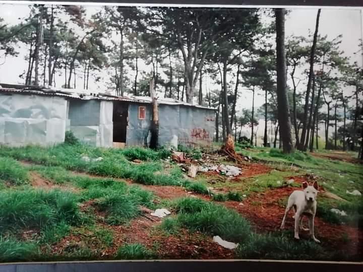 Bairro-da-Pasteleira-Ano-50-90-grupo-do-Facebook-25